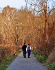 light walkers (leafy) Tags: urban stream pittsburgh restoration recovery frickpark ninemilerun wetland ecosystem stormwater nmrwa nativehabitatrestoration ninemilerunorg manageent