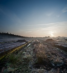 moor (derScheuch) Tags: morning blue sky brown sun mist cold nature water fog geotagged early wasser frost nebel minolta sony himmel 24mm alpha moor eis sonne stitched turf 900 graben torf geo:lat=531210233844081 geo:lon=8106330981475821