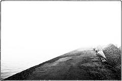 ... IMG_7162 (*melkor*) Tags: sea mist art nature monochrome fog landscape geotagged seaside waves foggy experiment minimal quay conceptual calmsea melkor portocorsini trashbit onacoldquaylostinaquietseaofmist asundayattheseasideproject seasidequay