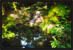 The Pixie Pond (Repp1) Tags: park garden pond stream jardin fairies pixies newwestminster fées étang d300 ruisseau lutins cs5 ononeperfectsuite6parc