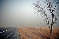 The Fog (lynn.h.armstrong) Tags: road camera morning brown white mist ontario canada black tree art field lines yellow fog wales forest fence lens geotagged photography grey photo interesting mac aperture nikon long flickr zoom pavement telephone south images pole lynn h getty nikkor armstrong stormont vr gravel licence afs request dx sault attribution ingleside 2011 ifed 18200mm f3556 noderivs vrii d7000 lynnharmstrong