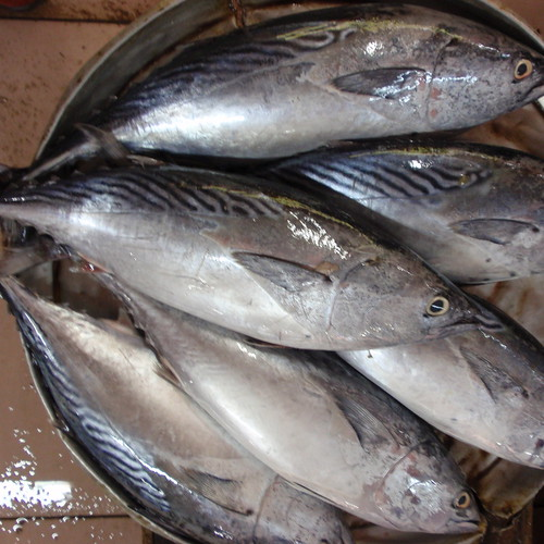 Kota Bharu market- fish