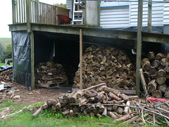20110502c Wood shed