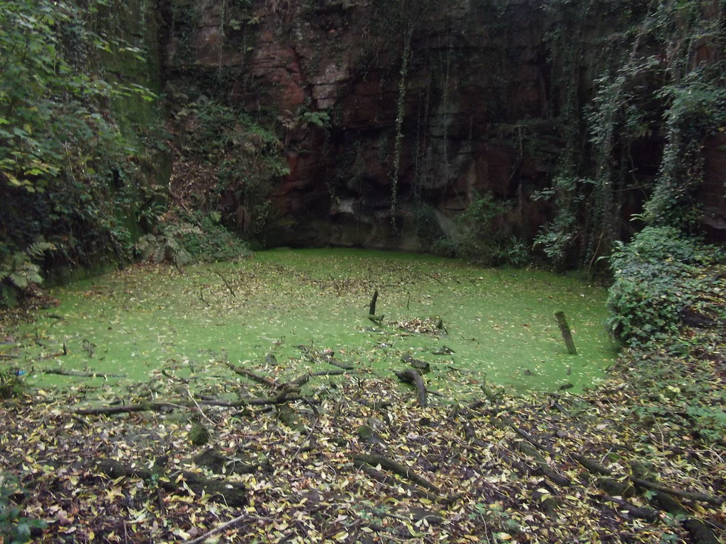 The pool where tragedy overcame the brother of the Killer of Bessie Gladys Knott.