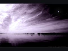.. solo silenzi .. (swaily ◘ Claudio Parente) Tags: moon lago nikon poetry silouette poesia toscana emotions paesaggi wwf maremma sogno silenzio d300 wow1 wow2 wow3 capalbio egna lagodiburano nikond300 claudioparente swaily checchino saariysqualitypictures bestcapturesaoi fleursetpaysages elitegalleryaoi artistoftheyearlevel3 artistoftheyearlevel4 musictomyeyeslevel1 lelitedespaysages
