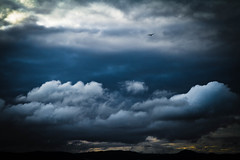 Bird in the sky (Peter Hodge) Tags: yahoo:yourpictures=landscape