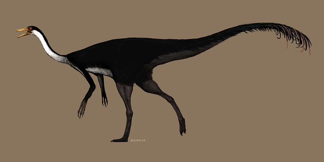 gallimimus revision