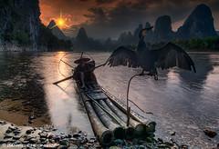 The Boatman :: Passage to Mordor (DanielKHC) Tags: china light sun mountains color bird water river boat fisherman nikon guilin yangshuo dramatic lotr fairy fantasy nik cormorant tale hdr boatman heroic d300 xingping photomatix autofx efex danielcheong danielkhc tokina1116mmf28
