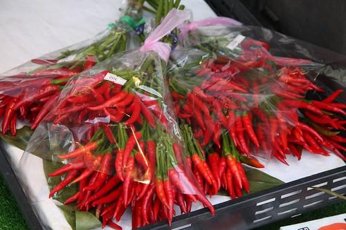 赤い花束 / Red bouquet