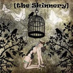 The Skinnery