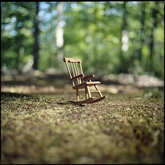 (Ansel Olson) Tags: trees colour 6x6 mamiya tlr film leaves pine mediumformat print moss chair series medium format rocking needles acorns 160 inthewoods c330 c330s newportra mamiyasekor55mmf45