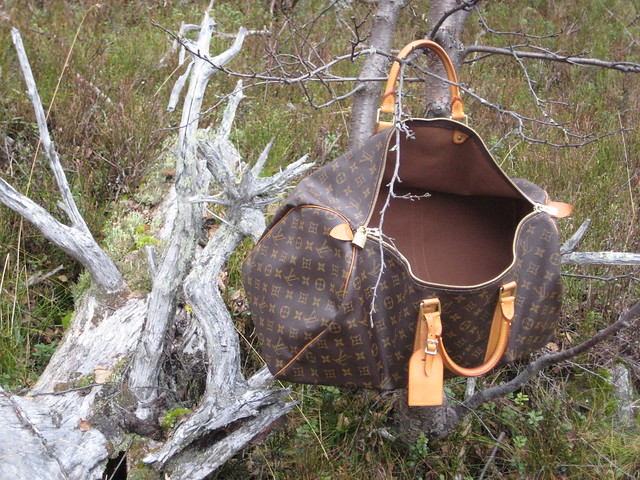 LV in the woods