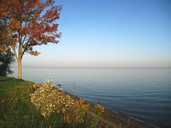 Lake Ontario (johnandmary.F) Tags: morning fallleaves lake water scenery autumnleaves greatlakes shore lakeontario