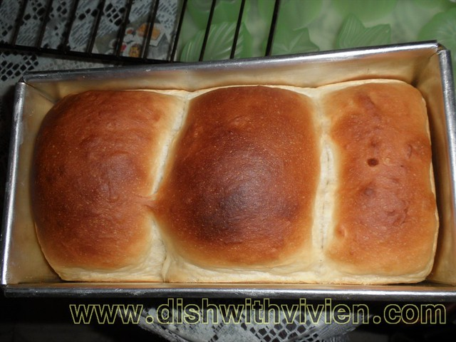 Overnight-Starter-Bread16