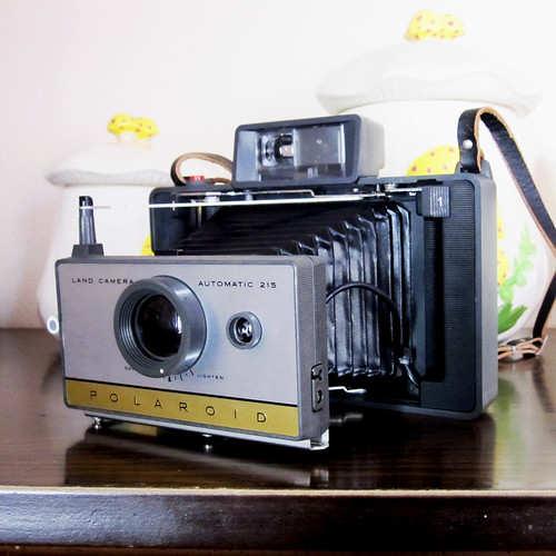 New Camera - Polaroid Automatic Land Camera 215