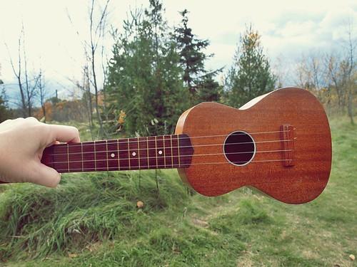 i love my ukulele
