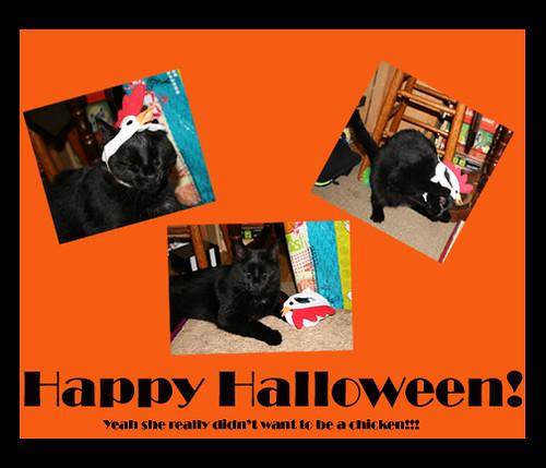 Fwd: Happy Halloween!
