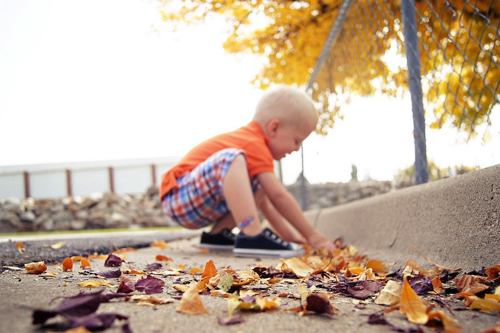 fallwalk3