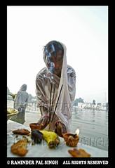 Chhath_Puja_06 (Raminder Pal Singh) Tags: portrait water temple worship pooja punjab emotions amritsar incense afc bestofflickr rituals hindus chhathpuja raminderpalsingh chhathpooja raminderphotography srilaxminarayan earlymorningprayerpca