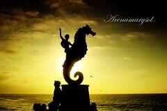 Caballito de Mar al atardecer (Arenamarysol Photography) Tags: travel sunset sky water clouds mexico atardecer mar jalisco playa viajes cielo mexique puertovallarta siluetas vivemexico arenamarysol