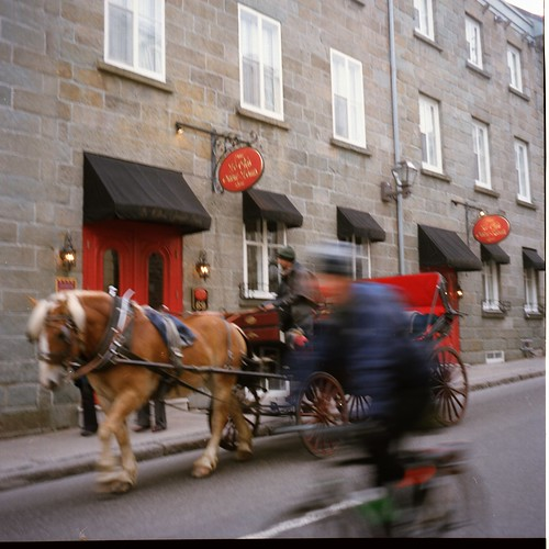 Horse versus Bicycle, Rue St Louis, Quebec City