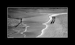 17. Winter Beach Walk (InPort05) Tags: seagulls white black beach birds walking landscape fishing fisherman couple australia portmacquarie waterscape beachscape angling lighthousebeach tackingpoint winterbeachwalk dennisgayaustraliaportmacquarieseascapewaterscapecoastapartmentproject