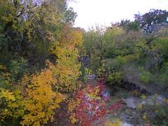 Autumn scene, Watters creek