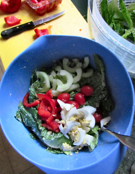 Caesar Salad Topping