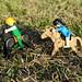 1er CAPITULO : Van 2 amigos cabalgando por la Sierra....(continuara)