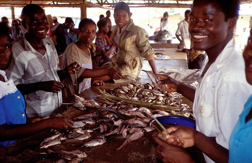 Chilwa fish market, Malawi. Photo by Randall Brummett, 2002