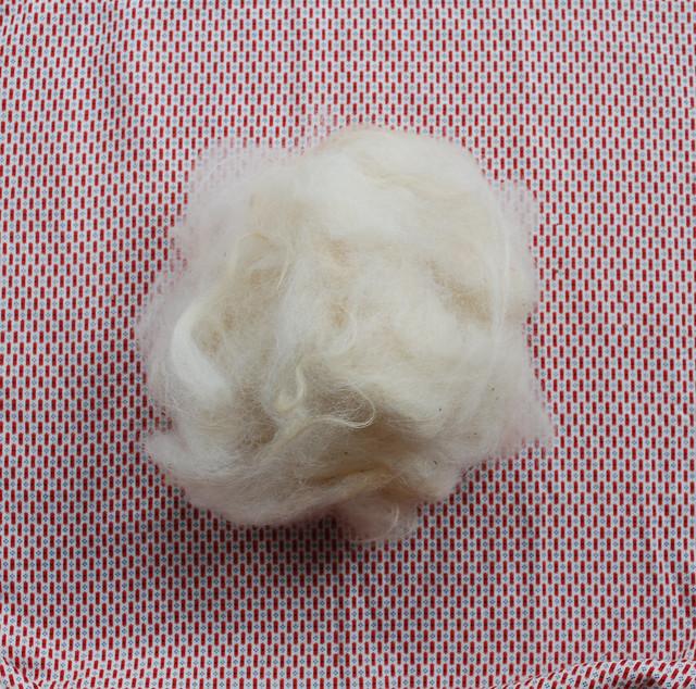 llama wool from Eduardo