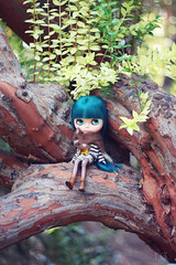 climbing trees and looking pretty