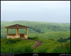 Darbat, Taqah, Dhofar (Shanfari.net) Tags: green nature season lumix raw natural panasonic vegetation greenery lush oman fz zufar rw2 salalah sultanate sarb dhofar  khareef    dufar      dhufar governorate dofar fz38 fz35 dmcfz35
