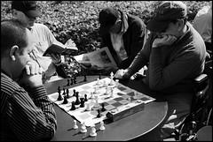 L9991823 B&W (Damien DEROUENE) Tags: nyc newyorkcity chess bryantpark leicam8 damienderouene