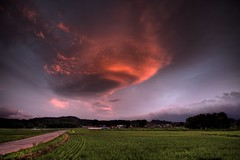 Lenticular Magic in Hachimantai City (jasohill) Tags: road city sky nature japan clouds japanese rice magic curves ufo iwate backgrounds 日本 layers shape 雲 自然 lenticular 岩手県 空 hdr saucer matsuo paddies 田んぼ 夕焼け 面白い wow1 wow2 wow3 wow4 2011 undulatus wow5 wowhalloffame colorphotoaward platinumheartaward レンズ雲 asperatus hachimanatai aboveandbeyondlevel1 flickrstruereflection1 flickrstruereflection2 つるし雲