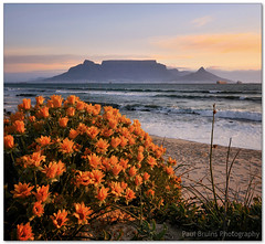 Natural Wonder (Panorama Paul) Tags: sunset capetown tablemountain nohdr sigmalenses nikfilters vertorama nikond300 wwwpaulbruinscoza paulbruinsphotography sevenwondersofthenaturalworld