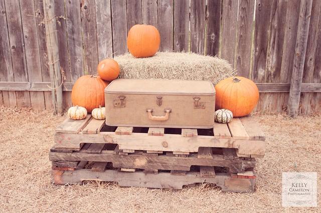 111006Pumpkins sm 23