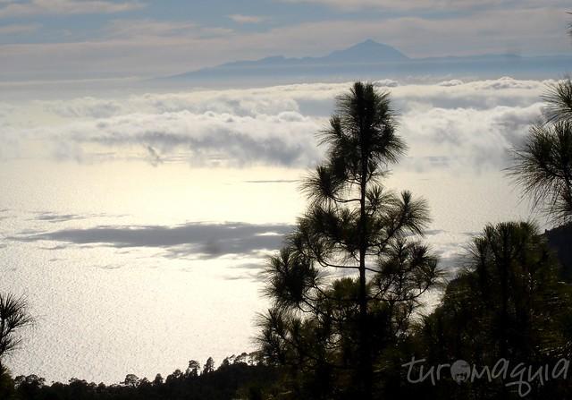 Trekking Roque Faneque - Gran Canaria