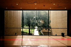 window (xgray) Tags: leica morning light shadow color reflection film window glass analog zeiss 35mm austin texas kodak 100 m7 ektar zm