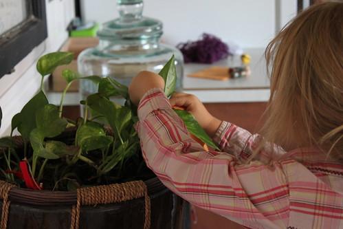 Montessori Practical Life 1