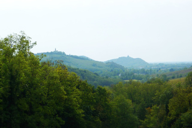 Collio in the mist