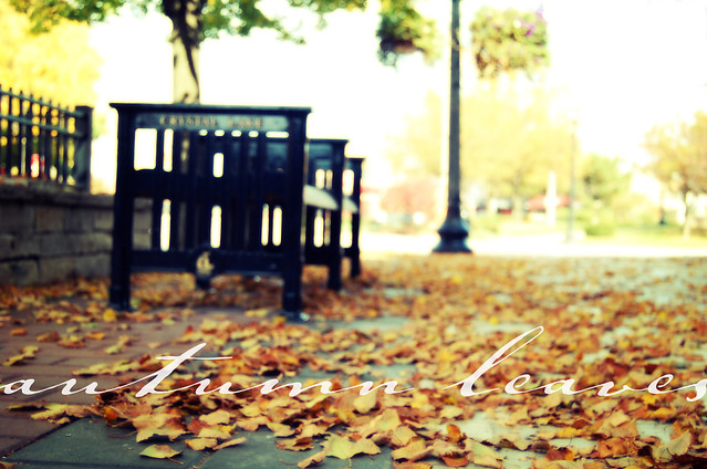 fall_2011_1