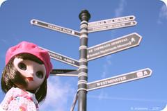 ¿? Hacia dónde voy¿?