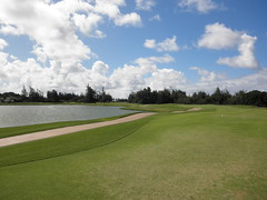 Turtle Bay Colf Course 296