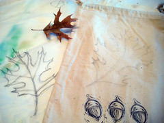 oak begins