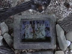 vine calligraphy (nightcloud1) Tags: water stone sink vine basin greys handcarved