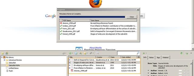 Metadata retrieved