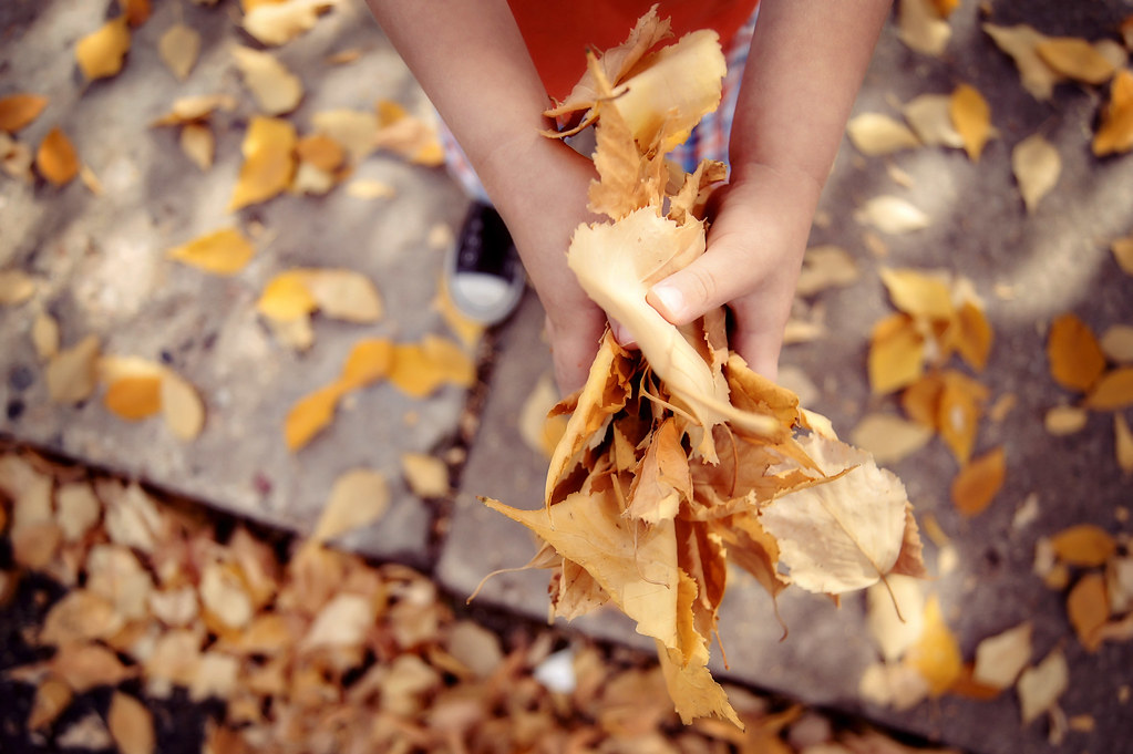 fallwalk1