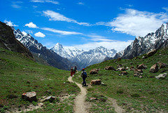 Dalsampa-Saicho Stage (Asif Saeed [ Thankx for 550K + viewz .....]) Tags: camping pakistan camp snow mountains sunshine trekking photography ali glaciers fields k2 blizzard asif landscapephotography baltoroglacier pakistanlandscape nothernpakistan trekkerz asifsaeed gettyimagesmiddleeast