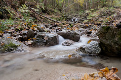 Stream near Iverko (Alja Vidmar | ADesign Studio) Tags: longexposure nature water leaves stream ndfilter d5000 nd8x